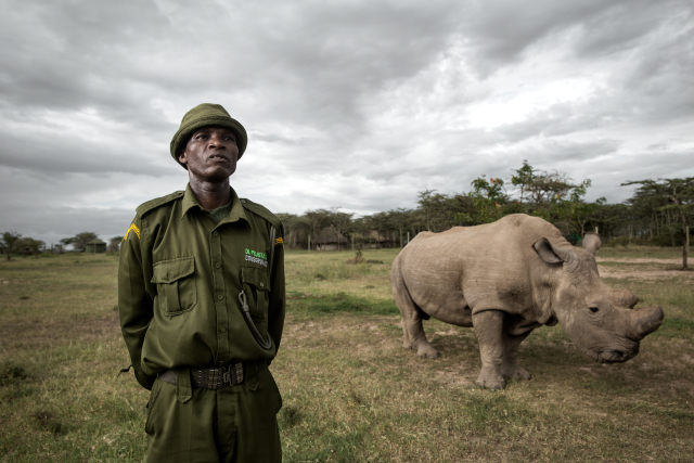 Jacob is one of Sudan's full time caretakers at Ol Pejeta Conservancy.
